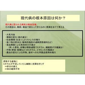 REAL Z-teraスーパーシリカエナジー ミネラル濃縮溶液 健康美容の基 サプリメント ichigo-japan 06