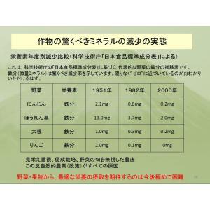 REAL Z-teraスーパーシリカエナジー ミネラル濃縮溶液 健康美容の基 サプリメント ichigo-japan 07
