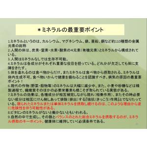 REAL Z-teraスーパーシリカエナジー ミネラル濃縮溶液 健康美容の基 サプリメント ichigo-japan 08