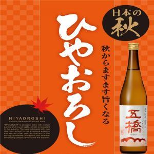 五橋 純米酒 ひやおろし 日本酒 山口県 720ml|ichigou-sake