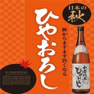 飛良泉 山廃純米酒 ひやおろし 生酒 日本酒 秋田県 720ml|ichigou-sake