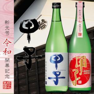 飯沼本家 甲子 純米吟醸 生原酒 令和 720ml 飲み比べ セット|ichigou-sake