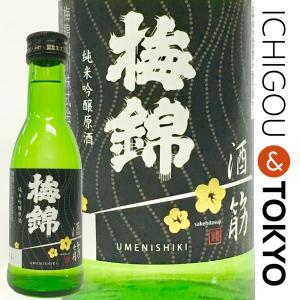 日本酒 純米吟醸 梅錦 純米原酒 酒一筋 180ml|ichigou-sake
