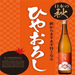 峰乃白梅 純米吟醸酒 ひやおろし 日本酒 新潟県 720ml|ichigou-sake