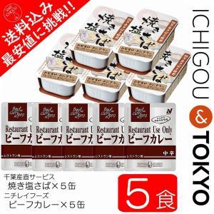 さばカレー 5食セット|ichigou-sake