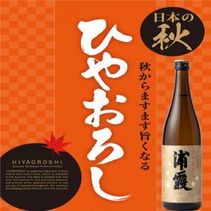 佐浦 浦霞 特別純米酒 ひやおろし 生酒 日本酒 宮城県 720ml|ichigou-sake