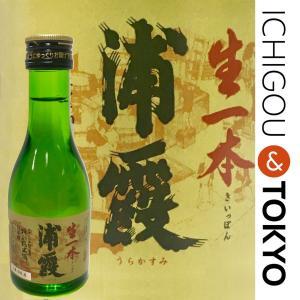 日本酒 純米 浦霞 特別純米 生一本 180ml|ichigou-sake