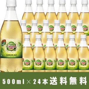 カナダドライ ジンジャーエール 500ml×24本 送料無料 ペットボトル 1ケース|ichiishop