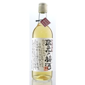 【栄光酒造】蔵元の梅酒 500ml 梅 うめ 焼酎ベース梅酒 リキュール|ichiishop