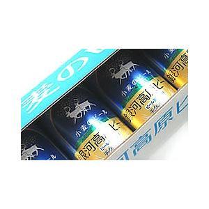 銀河高原ビール 小麦のビール350ml缶×24缶|ichiishop