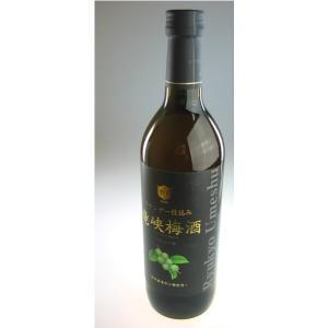 【本坊酒造】竜峡梅酒 ブランデー仕込み 14度 720ml|ichiishop