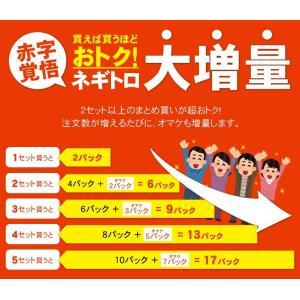 (マグロ まぐろ 海鮮丼) 天然マグロ粗挽きネギトロ100g×2 《ref-nd1》〈nd1〉yd5[[ネギトロ100g-2p]|ichijyo|02