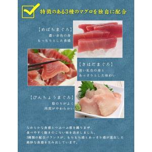 (マグロ まぐろ 海鮮丼) 天然マグロ粗挽きネギトロ100g×2 《ref-nd1》〈nd1〉yd5[[ネギトロ100g-2p]|ichijyo|10