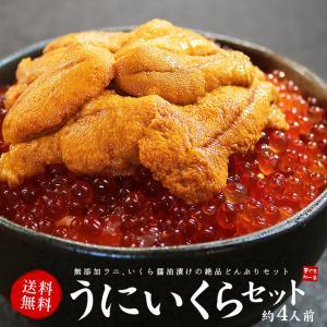 お歳暮 ギフト  海鮮詰め合わせ 無添加うに&北海道産いくらセット 丼4杯分 《ref-ur1》 yd5[[ウニイクラセット-2p]|ichijyo