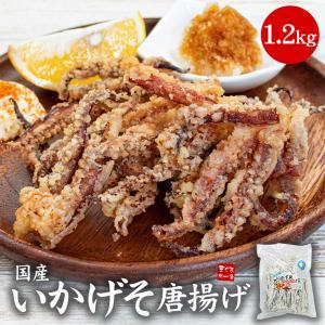 いかげそ唐揚げ1kg(500g×2)《ref-sq1》[[いかげそ唐揚げ500g-2p]|ichijyo