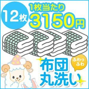 布団クリーニング クリーニング 丸洗い 12枚セット 送料無料 布団丸洗い ふとんクリーニング 羽毛布団 羊毛布団|ichikawa929
