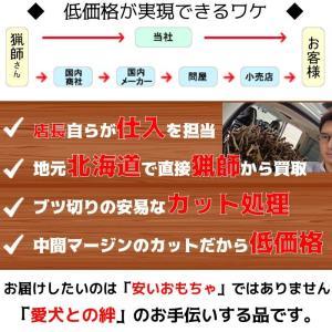 北海道産★鹿の角★犬のおもちゃ15〜25cm【送料無料】大型犬喜ぶ頑丈な犬のおもちゃ鹿角『角王(つのおう)』|ichikawa929|11