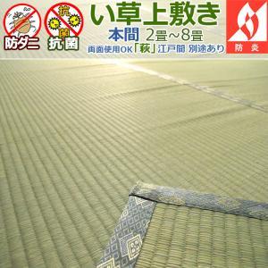 い草カーペット 上敷き 六畳 6畳 萩 本間 286×382cm アイコン|iconyt