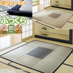い草 ラグ ござ 4畳 四畳 雫 191×300 ボリューム ふっくら 涼しい フローリング クッション性|iconyt
