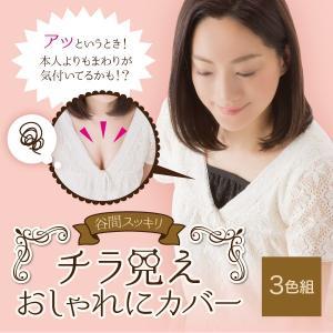 ドレスアップ胸元カバー 谷間・ブラジャー隠し 重ね着風 ポイント消化 母の日|idea-info