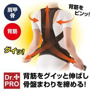 Dr.PRO グイッと伸びる背筋ベルト 背筋 肩甲骨 骨盤まわり 引き締め 姿勢矯正サポート  猫背 男女兼用 送料無料|idea-info