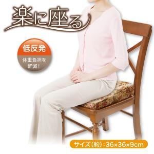 低反発 姿勢 座骨 骨盤 楽に座る 骨盤姿勢クッション|idea-info
