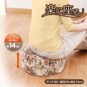低反発 姿勢 座骨 骨盤 楽に座る ゆったり楽円クッション|idea-info
