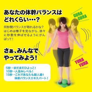 メーカー正規品  ダイエット 筋トレ シェイプエクサバランス インナーマッスル|idea-info|03