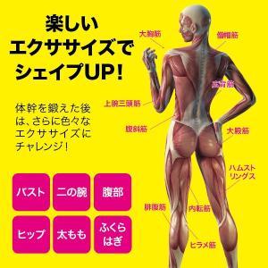 メーカー正規品  ダイエット 筋トレ シェイプエクサバランス インナーマッスル|idea-info|05