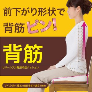 座骨神経痛 姿勢 痔 骨盤 腰痛 前下がり形状  リバーシブル背筋角座クッション|idea-info