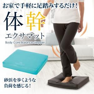 体幹エクサマット 筋力 バランス感覚 歩行訓練 足首強化 簡単 エクササイズ 筋トレ 筋活動量 消費カロリーアップ 母の日 父の日 敬老の日