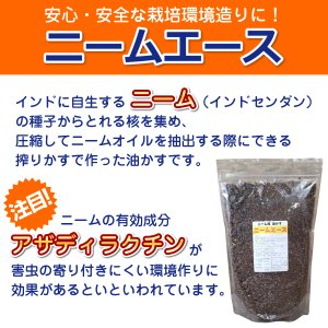 安心・安全。撒くだけで効果抜群 『ニームエース(1.2kg)』  |ideshokai|02