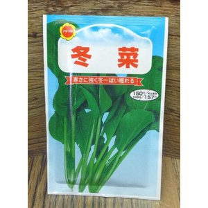 冬菜(種:アタリヤ) ideshokai