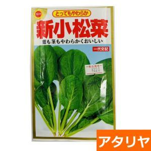 新小松菜(種:アタリヤ) ideshokai