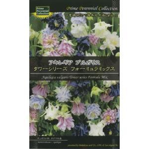 (宿根草) アキレギア ブルガリス タワーシリーズ フォーミュラミックス|ideshokai
