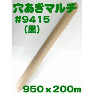 (送料無料) 穴あきホールマルチ #9415(黒) (農業用マルチ)|ideshokai