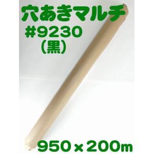 (送料無料) 穴あきホールマルチ #9230(黒) (農業用マルチ)|ideshokai
