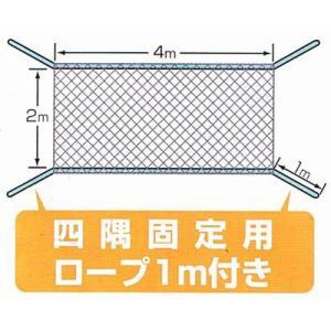鳩よけネット(2mx4m) グリーン ideshokai 03