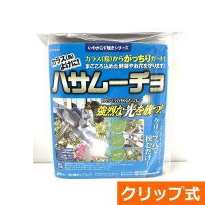 家庭菜園用カラス除け「ハサムーチョ」|ideshokai