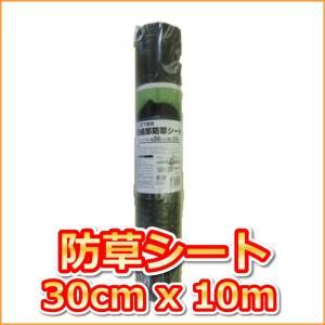 (抗菌剤入)草よけシート (0.3mx10m)|ideshokai