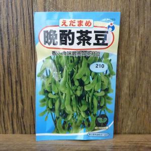 晩酌茶豆(えだまめ)(種:ウタネ) ideshokai
