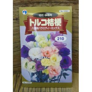 トルコ桔梗(八重咲バラエティーミックス)(種:ウタネ) ideshokai