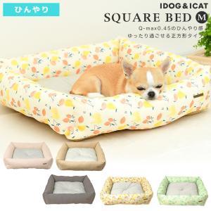 犬 ベッド IDOG&ICAT ひんやり防虫スクエアベッド Mサイズ moscape COOL アイドッグ|idog