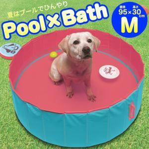 ラッピング不可  夏、水しぶきを上げながら愛犬と楽しくコミュニケーション! シャンプー時のお風呂とし...