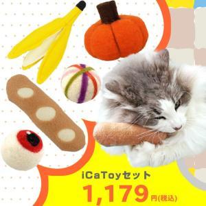 猫用品 iCaToyセットの画像