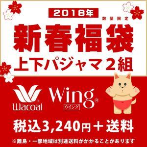福袋 2018 レディース ワコール ウィング・ナイティ 福...