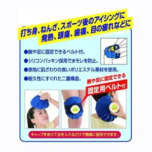 ピップ アイスバッグ 小さめタイプ 600ml|idr-store