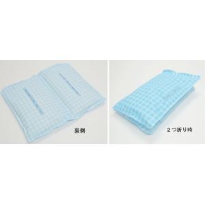 紀陽除虫菊 2連大型やわらかWアイス枕 冷凍枕1個1900g|idr-store