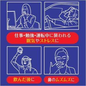 NOSEMINT ノーズミント idr-store