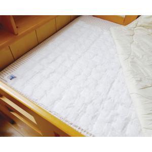 紀陽除虫菊 除湿シート 消臭シート ノボピン (敷きふとん用) 約78×98cm 1枚入